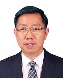 副会长 秦荣生